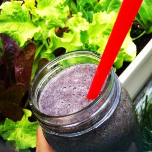 Blueberry Protein Smoothie!