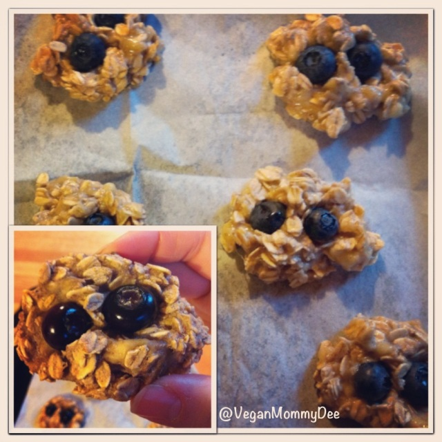 Healthy Banana Blueberry Oat Cookies!